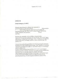 Sidan 1